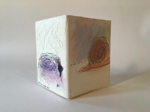 journey of a snail, Barbara Schaff
