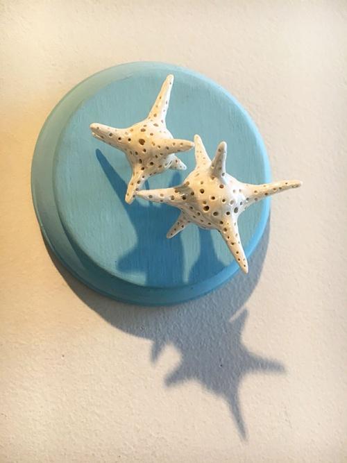 Star Shaped Sand Protists