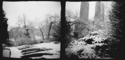 Central Park silver gelatin print copyright Mira Gohel