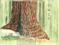 Tree, colored pencil, artist book