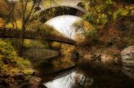 Bridging the Gap - photograph by Elena Bouvier